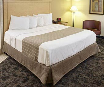 Rooms at LivINN Hotel Minneapolis South/Burnsville